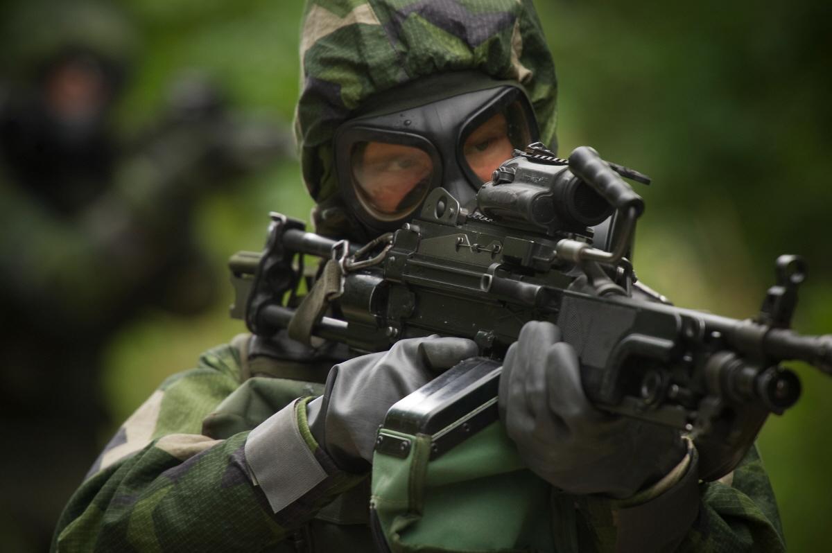 Svenska vapen till frankrike